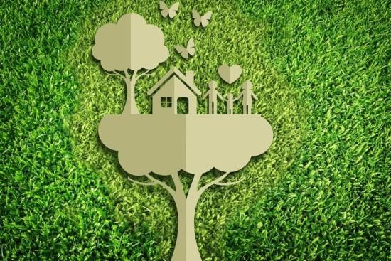 ecologiaarredamento_propertieslife